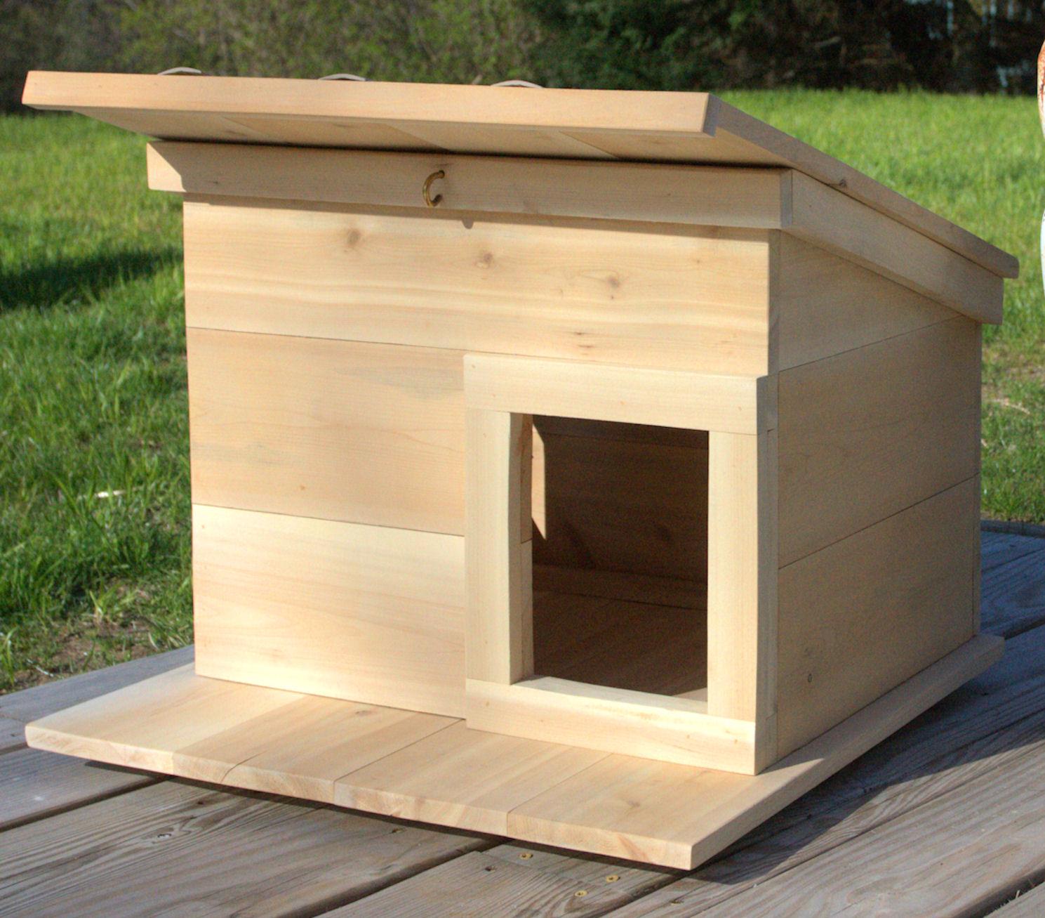 Outdoor Cat Enclosure Diy Winter