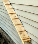 Outdoor Cedar Cat Ramp