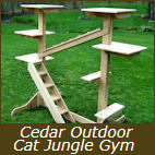Cedar Outdoor Cat Jungle Gym